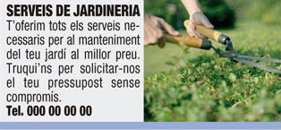 Exemple d'anunci de la mida text + foto